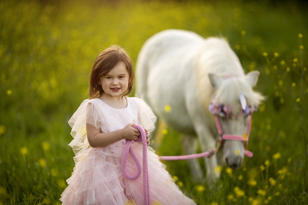 Unicorn Mini Session
