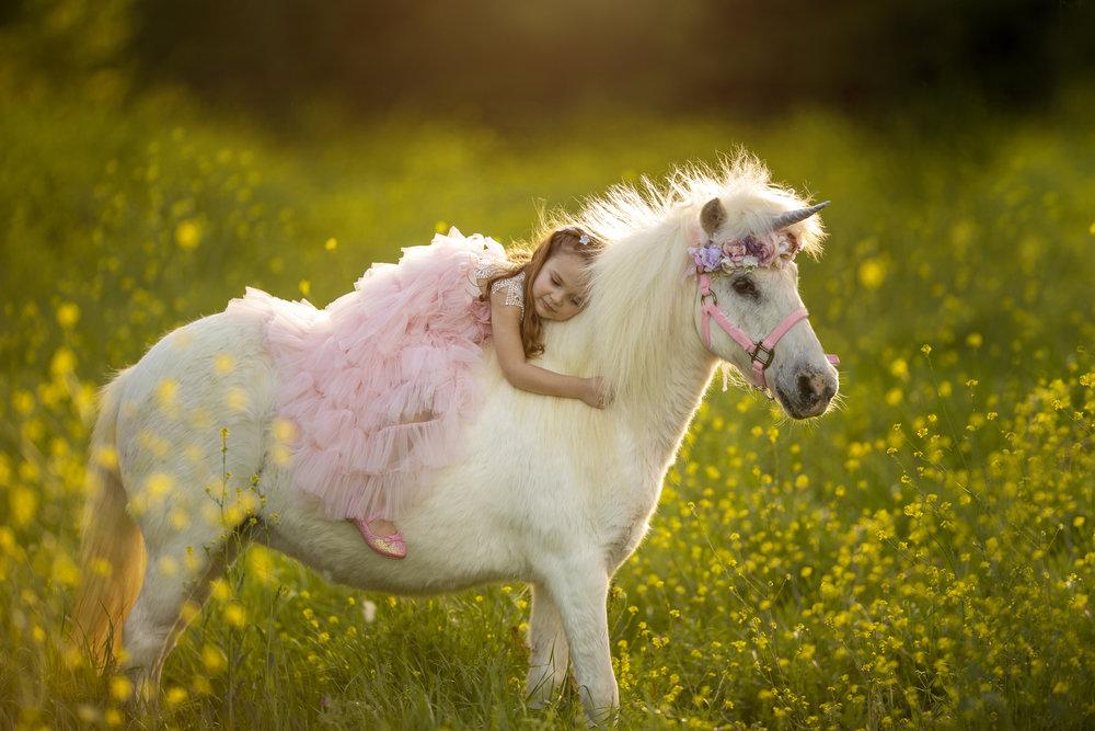 Unicorn Mini Session