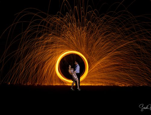 Steel Wool Images | Keller, TX